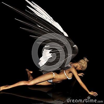 Angel 164