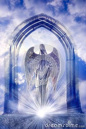 Angel Stock Photos Image 16410773