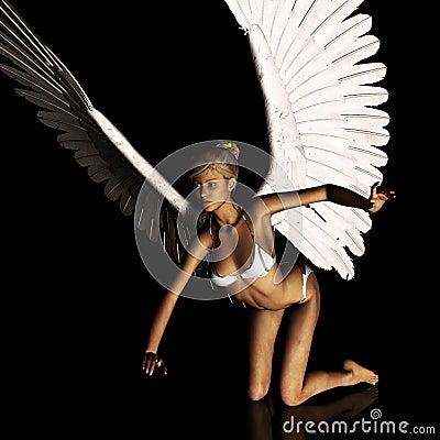 Angel 168
