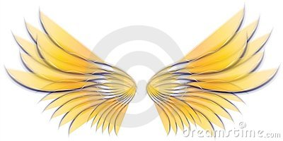 Angel Bird or Fairy Wings 3