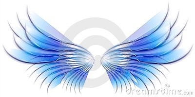 Angel Bird or Fairy Wings Blue