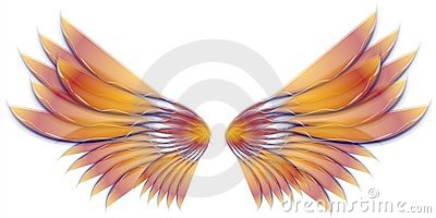 Angel Bird or Fairy Wings Gold