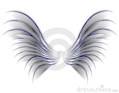 Angel Bird or Fairy Wings Grey