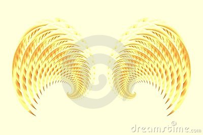 Angel Fairy or Bird Wings 2