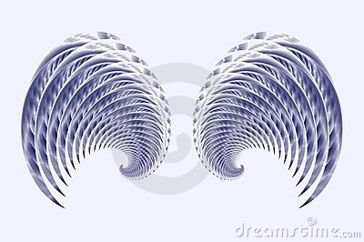 Angel Fairy or Bird Wings