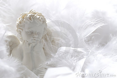 Angel in feathers
