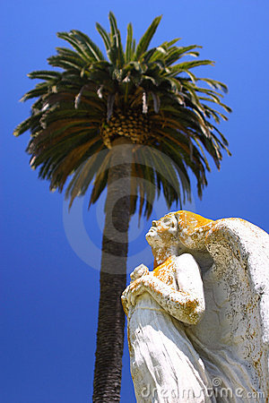 Angel and Palm Tree