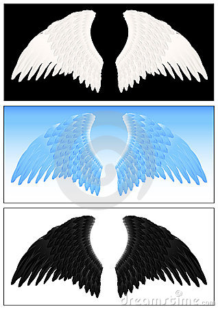 Angel wing set