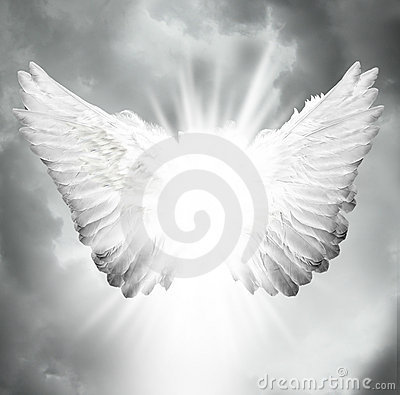 Free Angel Wings Royalty Free Stock Photo - 20726115