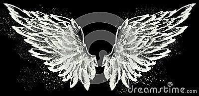 Angel wings on black Stock Photo