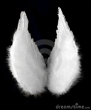 Angel Wings Isolated on Black Top View