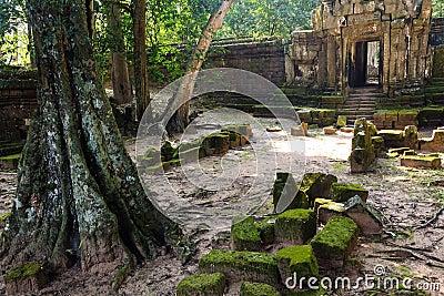 Angkor Royal Palace door