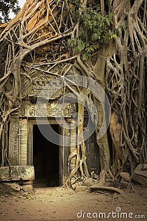 Free Angkor Wat Stock Image - 8580911