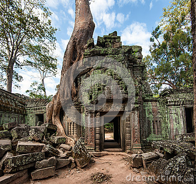 Free Angkor Wat Cambodia. Ta Prohm Khmer Ancient Buddhist Temple Stock Photo - 42007890