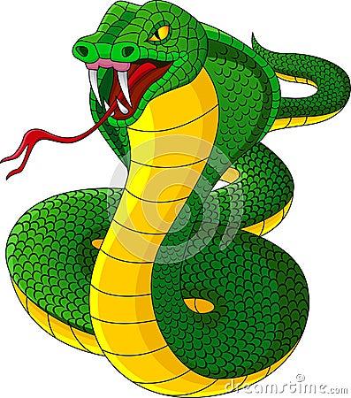 Angry Cobra