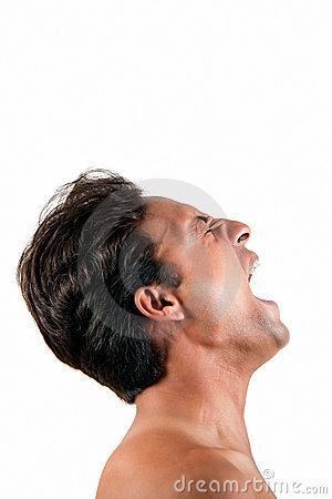 Free Angry Indian Man Screaming Stock Image - 20324871