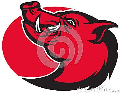 Angry razorback wild pig hog boar head