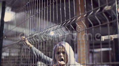 Angry rock and roll girl,. Angry rock and roll girl with grey hair inside a metal cage stock footage