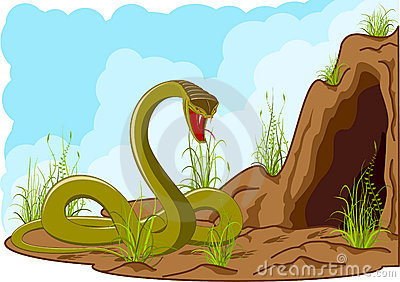 Angry snake near cave