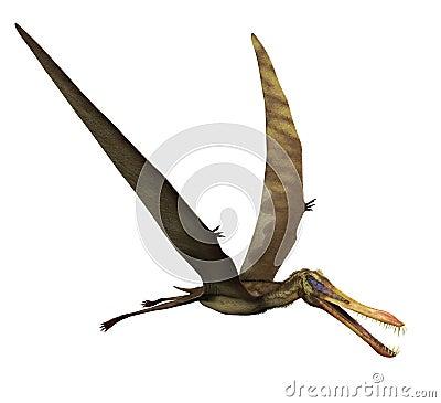 Anhanguera Dinosaur in Flight