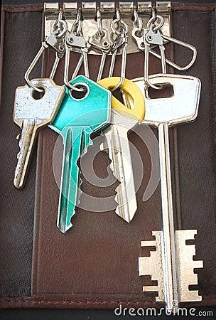 Anillo de claves del bolsillo