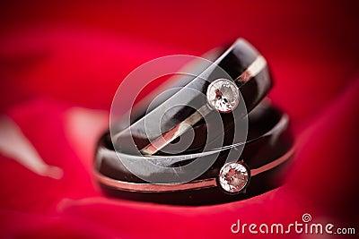 Anillos de bodas oscuros en los pétalos rojos