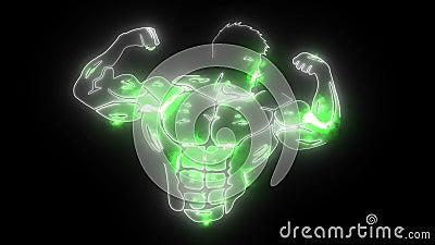 Animação de vídeo Bodybuilder Fitness Model vídeos de arquivo