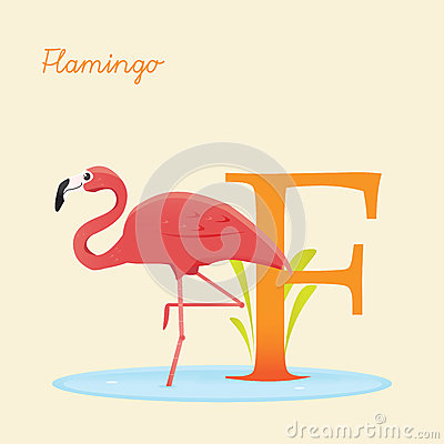 Animal alphabet with flamingo