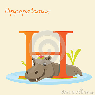 Animal alphabet with hippopotamus