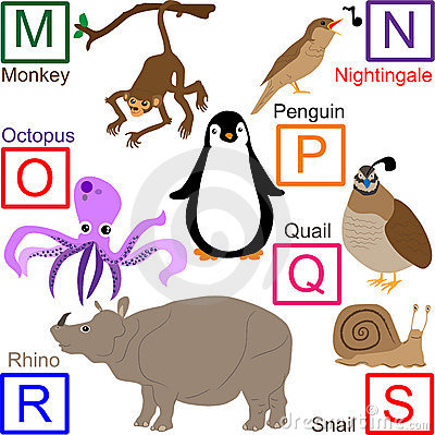 Animal alphabet, part 3 of 4