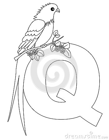 Animal Alphabet Q Coloring page