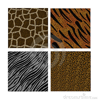 Animal Backgrounds