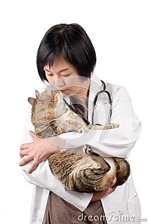 Animal doctor kiss cat