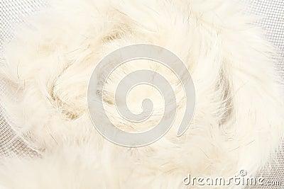 Animal fluff