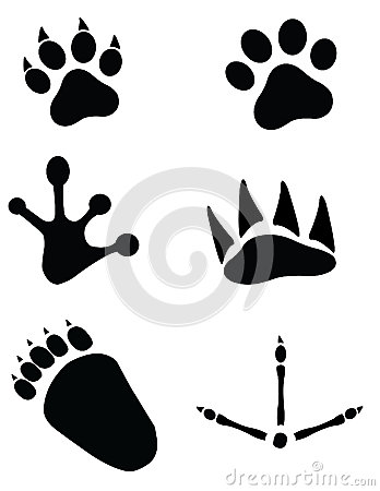 Free Animal Footprints Stock Image - 33574491