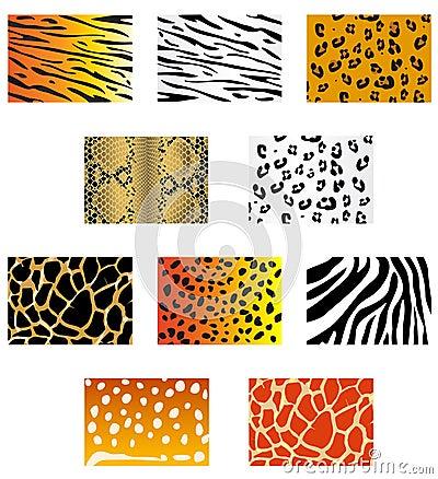 Free Animal Fur And Skin Royalty Free Stock Photos - 12423538