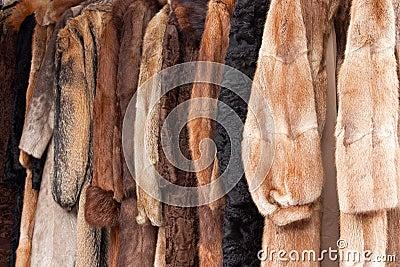 Animal fur coats