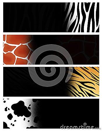 Animal header / banner