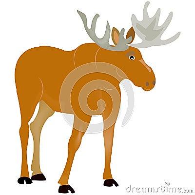 Animal moose