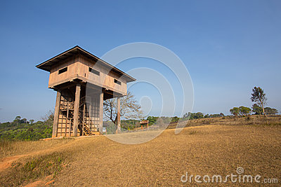 Animal observe tower