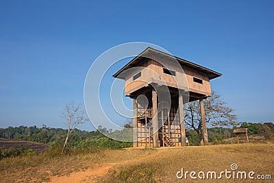 Animal observe tower