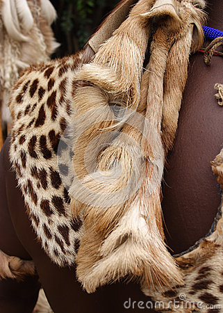 Animal pelt on Zulu warrior South Africa