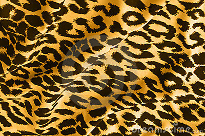 Stevo Tatto on Tiger Print Fabric