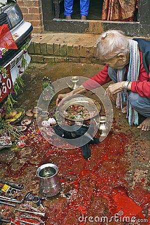 Animal Sacrifice in Bhaktapur during Dasai Editorial Photo