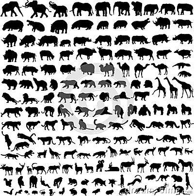 Animal silhouette contour