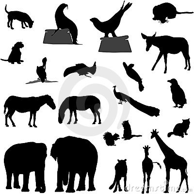 Free Animal Silhouettes Royalty Free Stock Photo - 2381505