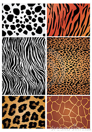 Free Animal Skin Stock Photos - 10176623