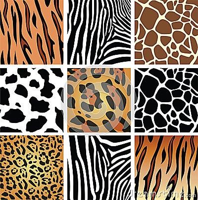 Free Animal Skin Textures Royalty Free Stock Photo - 15057095