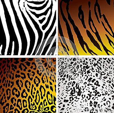 Animal skin variation