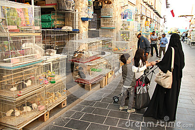 Animal souq in Doha, Qatar Editorial Stock Image
